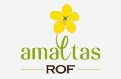 rof amaltas