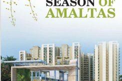 rof amaltas sector 92 justplan solution